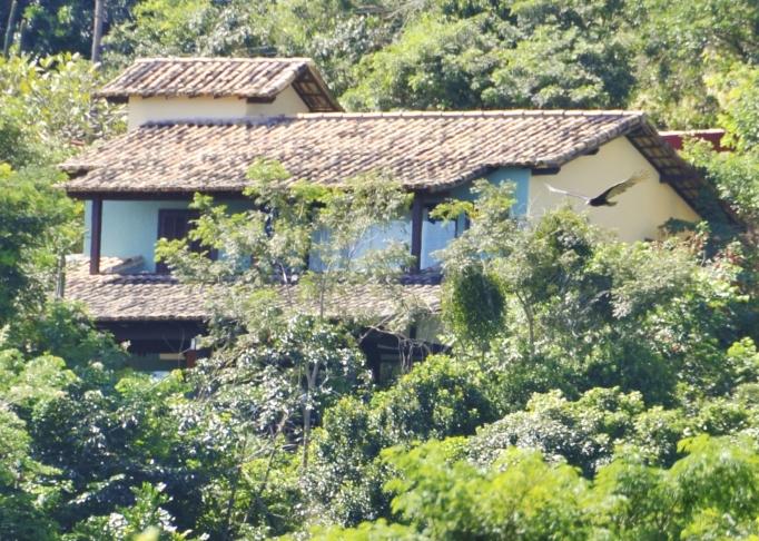 Casa da Luz with swooping bird!