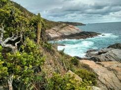 Coast Trail